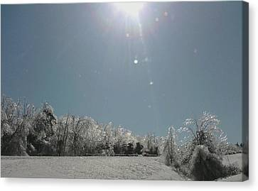 Canvas Print featuring the photograph Ice Kissed by Ellen Levinson