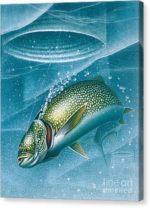 Ice Laker Canvas Print by Jon Q Wright