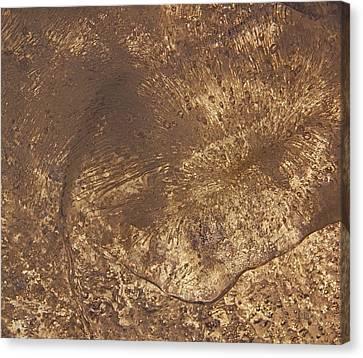 Ice Leaf Canvas Print