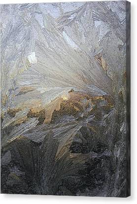 Ice Lillies Canvas Print by Jaime Neo