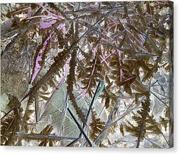 Terra Firma Canvas Print - Ice Negated by Debbi Saccomanno Chan