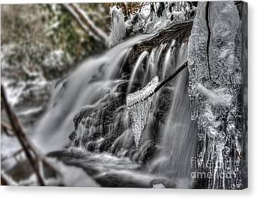 Ice On A Stick Canvas Print by Dan Friend