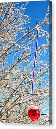 Ice Ornament Canvas Print by Jeffrey J Nagy
