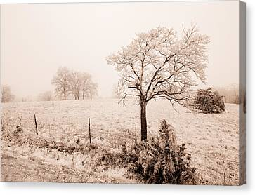 Ice Storm Canvas Print by Brent Craft