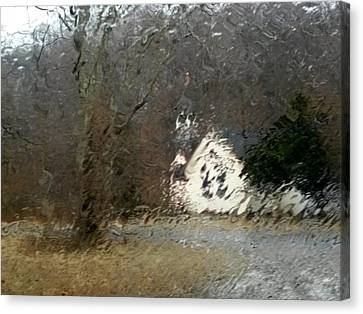 Canvas Print featuring the photograph Ice Storm by Steven Huszar