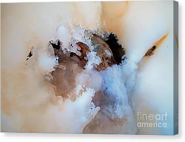 Canvas Print - Ice Transformation Vi by Gwyn Newcombe