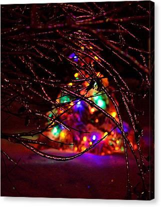 Ice Tree 2013 Canvas Print by Jeffrey J Nagy