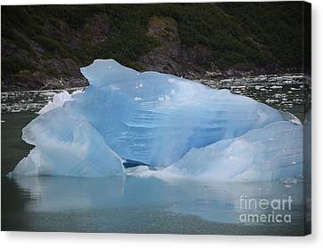 Iceberg At Tracy Arm Fjord Juneau Alaska Canvas Print