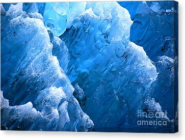 Canvas Print featuring the photograph Iceberg Blues by Cynthia Lagoudakis