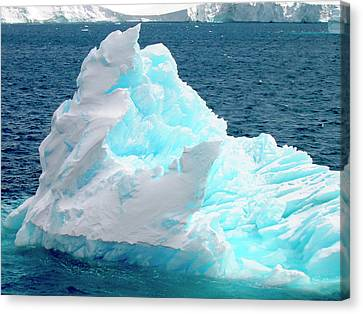 Icebergs Floating In The Sea, Paradise Canvas Print