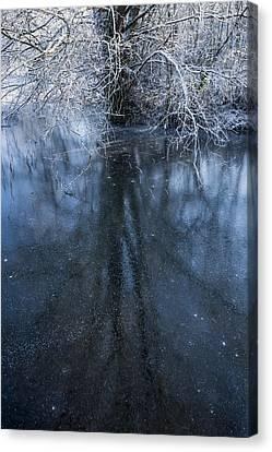 Iced Mirror Canvas Print by Svetlana Sewell