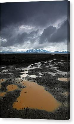 Iceland After The Rain Canvas Print by Nina Papiorek