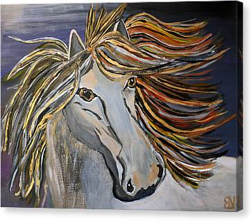 Icelandic Horse Canvas Print by Becki Nation