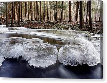 Icescape Canvas Print by Dawn J Benko