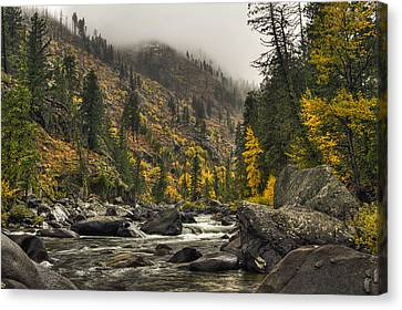 Icicle Creek Hues Canvas Print by Mark Kiver