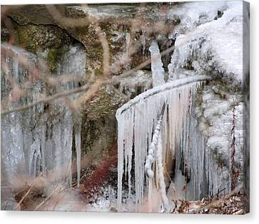 Icicle Creek Canvas Print