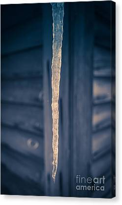 Icicle Canvas Print by Edward Fielding