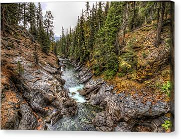 Icicle Gorge Canvas Print