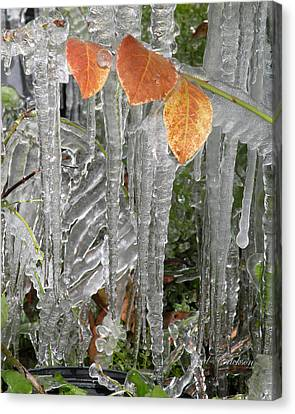 Icicles And Orange Leaves Canvas Print