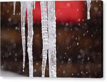Icicles Canvas Print by Denice Breaux