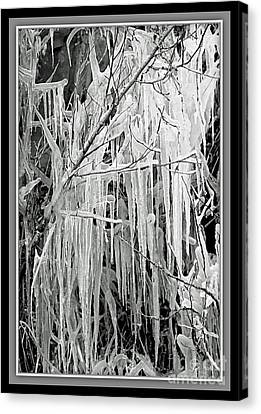 Icicles In Black And White Canvas Print by Carol Groenen