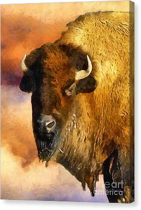 Icon Of The Plains Canvas Print by RC deWinter