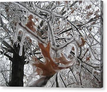 Icy Beckoning Canvas Print