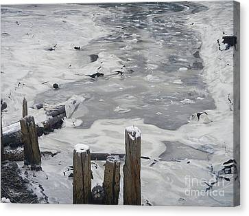 Icy Entrance  Canvas Print