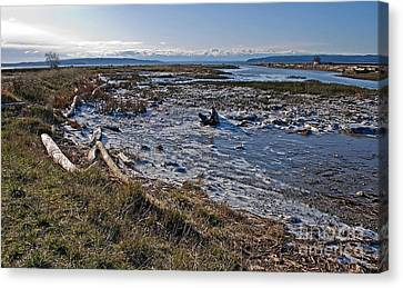 Icy Winter Tidal Flat Landscape Canvas Print by Valerie Garner