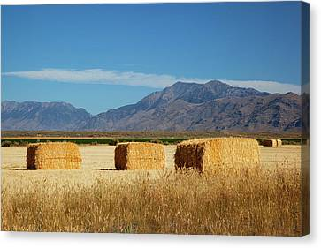 Idaho, Butte County, Hay Bales Canvas Print by Jamie and Judy Wild