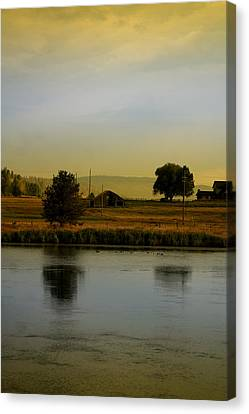 Idaho Tree Reflections  Canvas Print by Mary Gaines