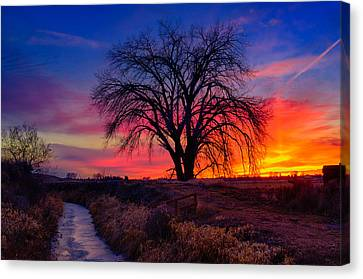 Canvas Print featuring the photograph Idaho Winter Sunset by Greg Norrell