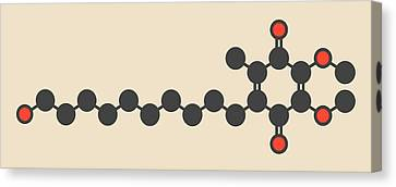 Idebenone Drug Molecule Canvas Print by Molekuul