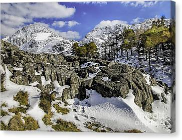 Idwal At Winter Canvas Print by Darren Wilkes