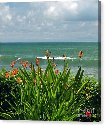 Jaco Canvas Print - Idyllic Afternoon by Michelle Wiarda-Constantine