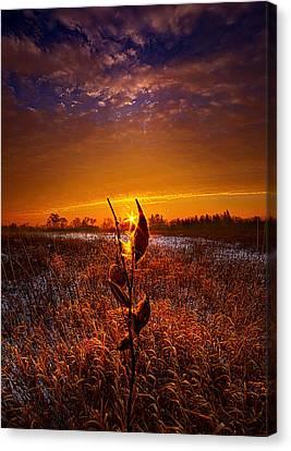 If Heaven Wasn't So Far Away Canvas Print by Phil Koch