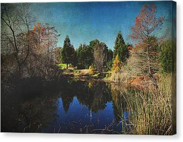 If I Could Canvas Print by Laurie Search