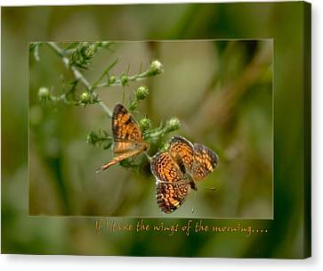 If I Take The Wings Of The Morning Canvas Print by Denise Beverly