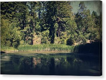 Dappled Light Canvas Print - If It Was An Ocean by Laurie Search
