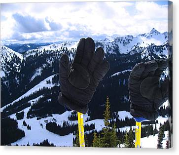 If The Glove Fits Canvas Print by Kym Backland