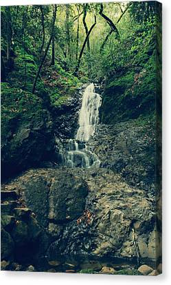 Falling Water Creek Canvas Print - If You Loved Me by Laurie Search