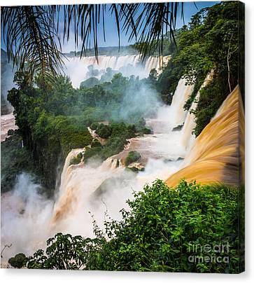 Iguazu Natural Wonder Canvas Print by Inge Johnsson
