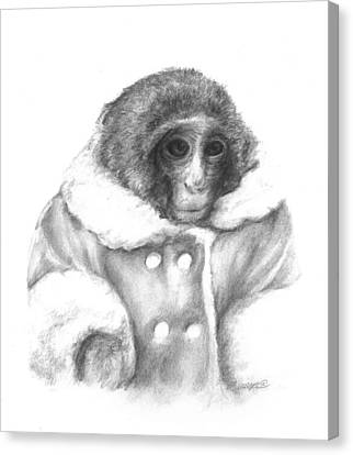 Ikea Monkey  Canvas Print