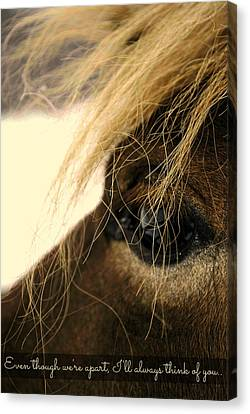I'll Always Think Of You.. Canvas Print by Chastity Hoff