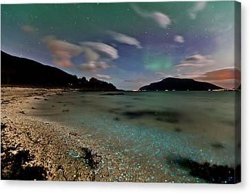 Illuminated Beach Canvas Print