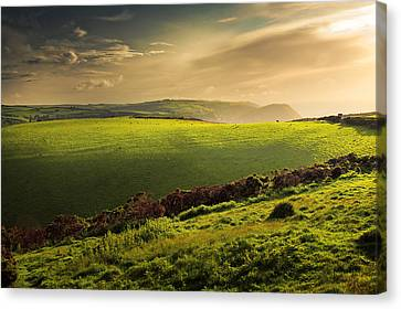 Illuminated Evening Landscape North Devon Canvas Print by Dorit Fuhg