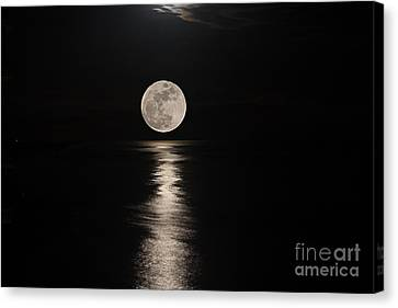 Silver Moonlight Canvas Print - Illuminating  by Bob Hislop