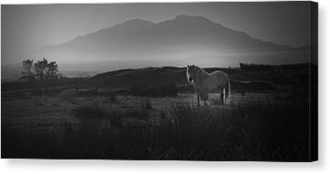 Canvas Print featuring the photograph Illumination Isle Of Skye by Sally Ross
