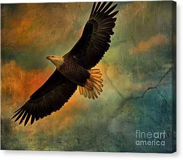 Illumination Of Spirit Canvas Print by Deborah Benoit
