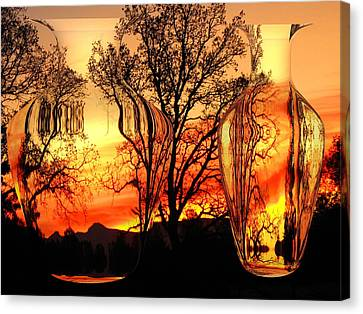 Canvas Print featuring the photograph Illusion by Joyce Dickens